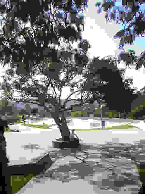 Praça Vila Nogueira Jardins modernos por ODVO Arquitetura e Urbanismo Moderno