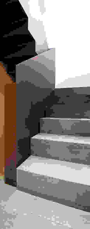 Modern Corridor, Hallway and Staircase by Tarimas de Autor Modern