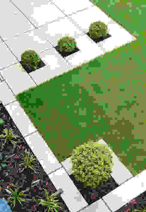 The Lollipop garden Modern garden by Robert Hughes Garden Design Modern