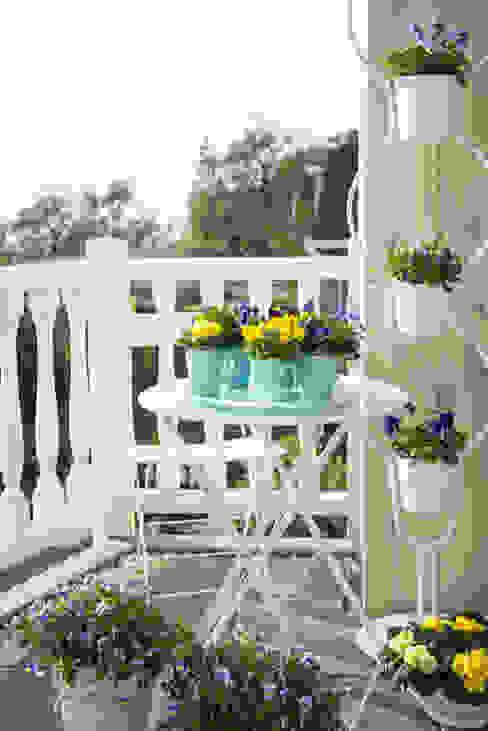Balconies, verandas & terraces  by Pflanzenfreude.de,