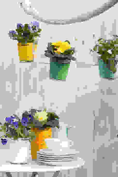 Pflanzenfreude.de Balkon, Veranda & TerasBitki & Çiçekler