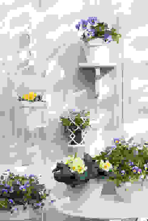 Frühlingsgarten von Pflanzenfreude.de Skandinavisch