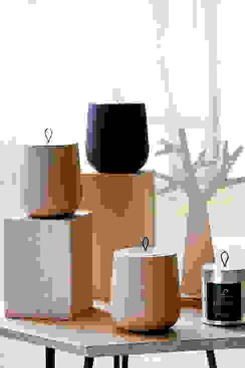 WOODEN - la bougie parfumée par Maison GILLES DEWAVRIN - Parfumeur d'Intérieurs Scandinave