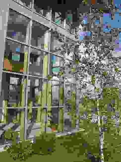 casa C Giardino d'inverno moderno di Giuseppe Maria Padoan bioarchitetto - casarmonia progetti e servizi Moderno