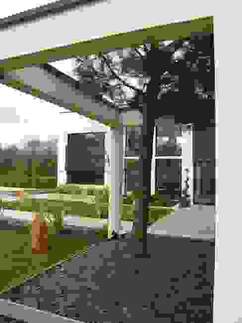 extérieur 5 Jardin d'hiver moderne par scp duchemin melocco architectes Moderne