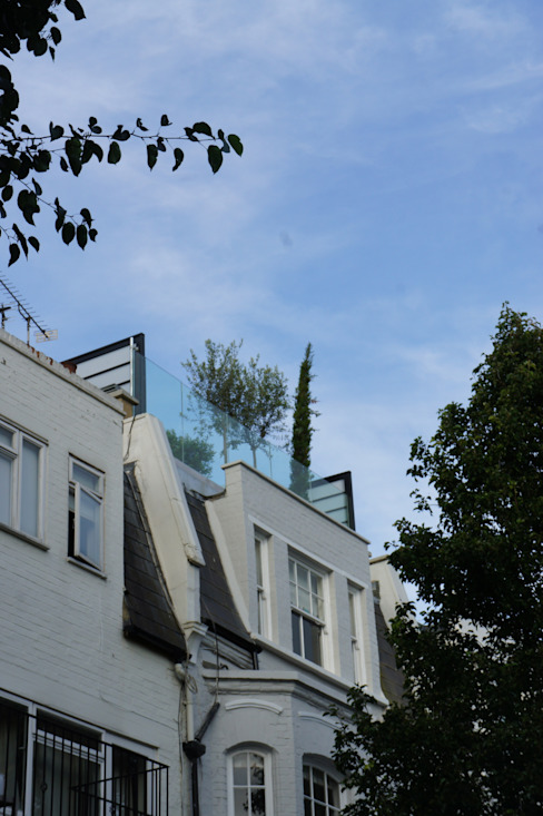 Fulham Roof Terrace:  Terrace by Organic Roofs, Minimalist
