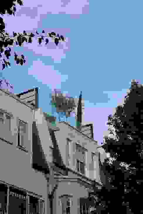 Hiên, sân thượng by Organic Roofs