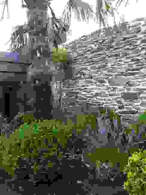 jardin nantes- palmier buis et lavandes Jardin classique par SO GREEN Classique