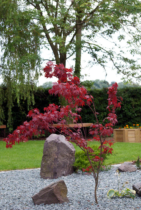 A tranquil combination of traditional rock, slate and Acer Asian style garden by Lush Garden Design Asian