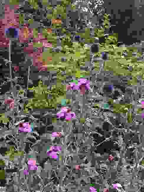 Taman oleh Anne Macfie Garden Design, Rustic