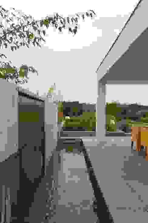 Minimalist style garden by PL.architekci Minimalist