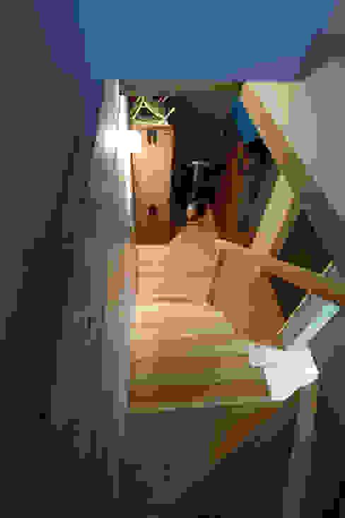 地下階段室 モダンスタイルの 玄関&廊下&階段 の 一級建築士事務所co-designstudio モダン