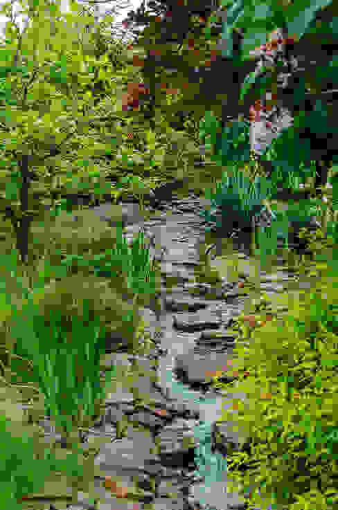 de Centrum ogrodnicze Ogrody ResGal Clásico