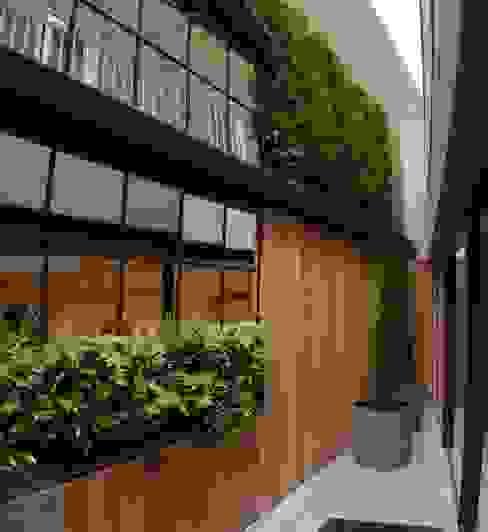 Living wall with mirrors Modern Garden by green zone design ltd Modern