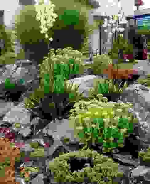 Pflanzung, Findlinge Neues Gartendesign by Wentzel Mediterraner Garten
