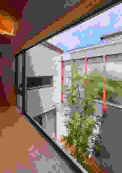 中庭: 森建築設計室が手掛けた庭です。,モダン