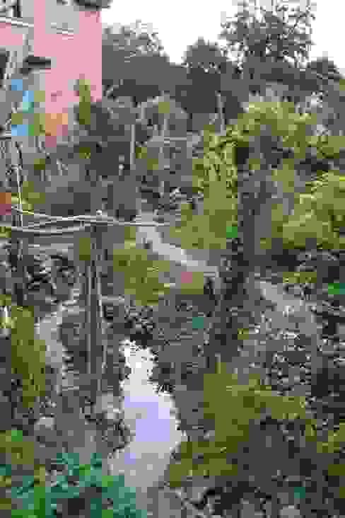 Blick von der Aussichtsterrasse Tropischer Garten von Gartenarchitekturbüro Timm Tropisch