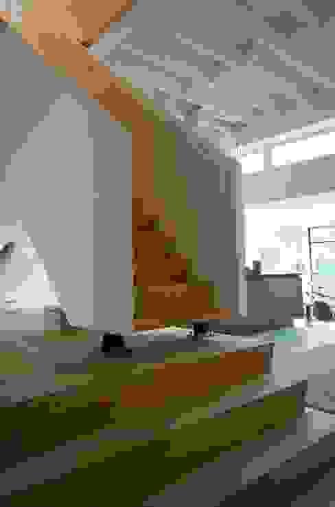 Modern Corridor, Hallway and Staircase by Bendien/Wierenga architecten Modern