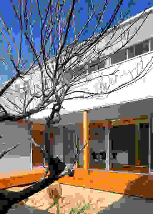 中庭の梅の木 オリジナルな 庭 の 有島忠男設計工房 オリジナル