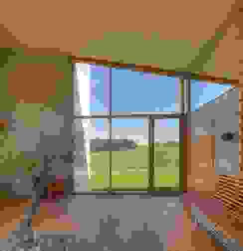 Atrium mit Olivenbaum kleboth lindinger dollnig Mediterrane Häuser