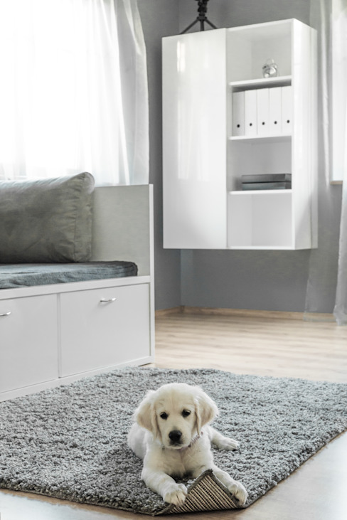 Dormitorios infantiles de estilo  de Sałata-Pracownia Architektury Wnętrz, Minimalista