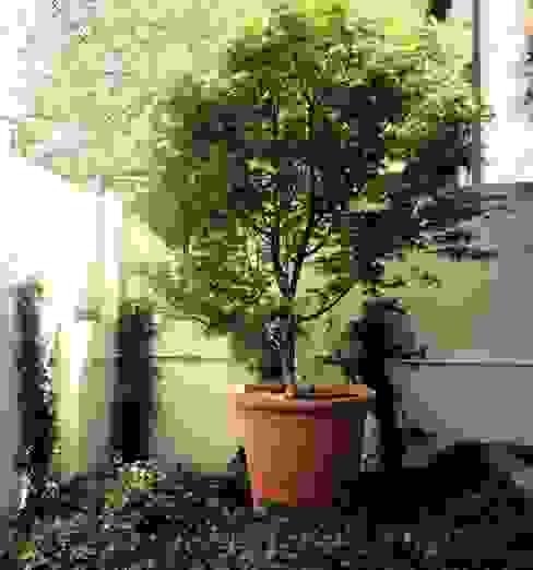 Detalle de patio Jardines de estilo clásico de a.s.paisajimo Clásico