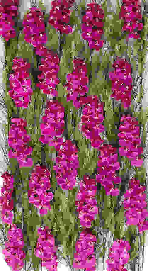 Parede de Orquídeas Vibrantes Materflora por Materflora Lda. Moderno