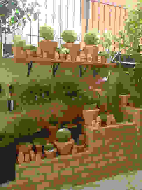 PEQUENO JARDIM APARTAMENTO TÉRREO. SÃO PAULO.BRASIL Jardins modernos por Línea Paisagismo.Claudia Muñoz Moderno