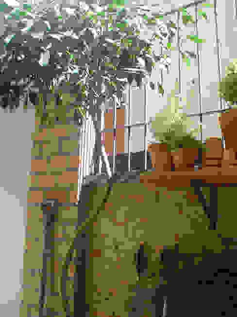 Jardins modernos por Línea Paisagismo.Claudia Muñoz Moderno