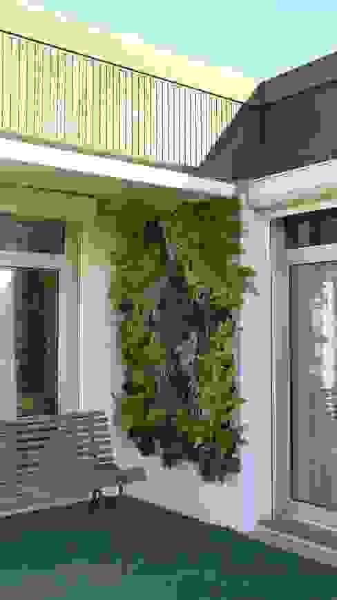 Mur végétal extérieur VERTICAL FLORE Jardin tropical par Vertical Flore Tropical