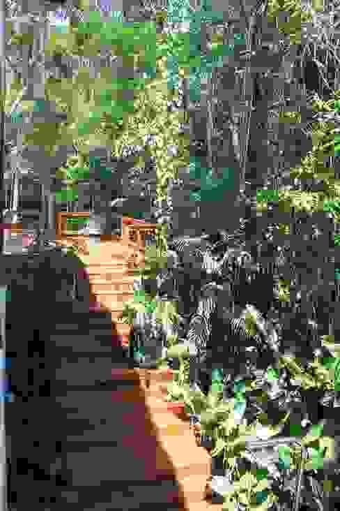 Juquey - Litoral São Paulo Jardins tropicais por Mera Arquitetura Paisagistica Tropical