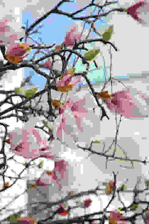 fleur ami GmbH Paesaggio d'interni