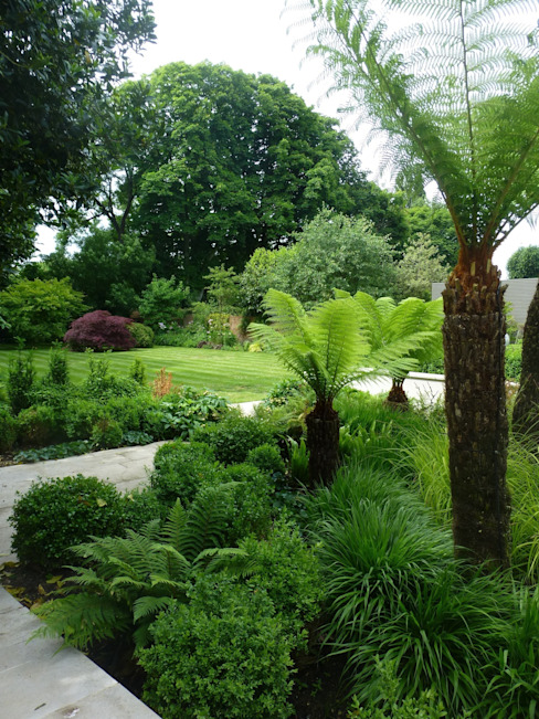 Fern Garden Tropical style garden by Garden Arts Tropical