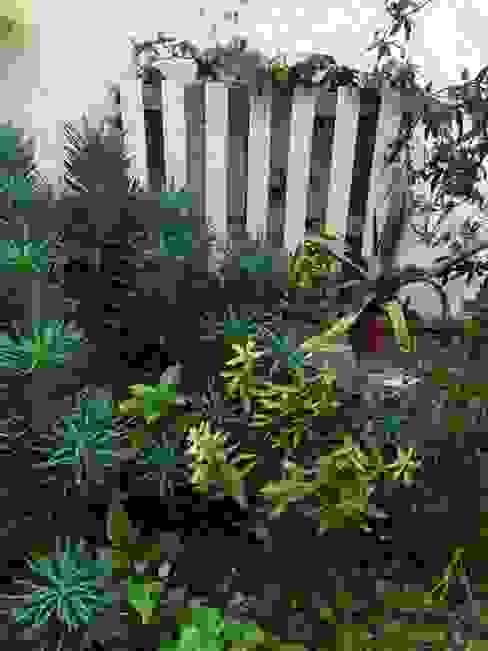 Nowoczesny ogród od Atelier d'Ersu & Blanco Nowoczesny