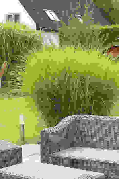 Terrassen grasgrau - GARTENDESIGN Moderner Garten