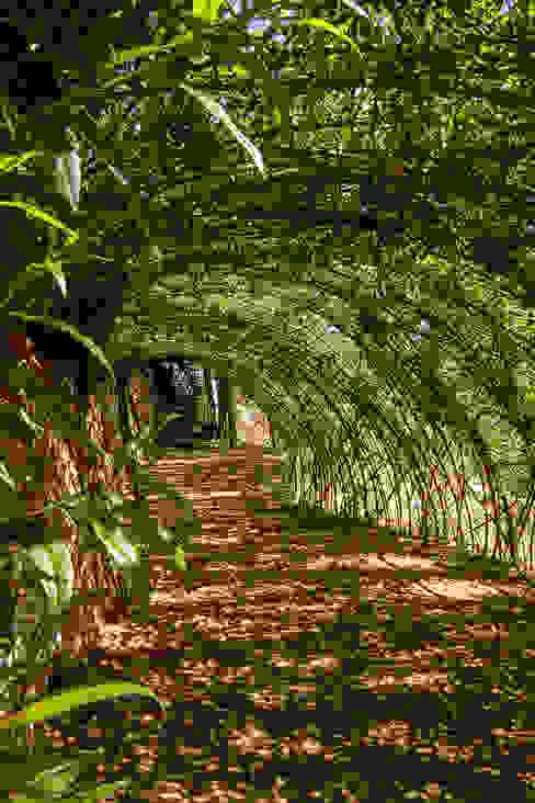 Estructuras de sauce vivo LANDSHAFT Jardines de estilo rústico