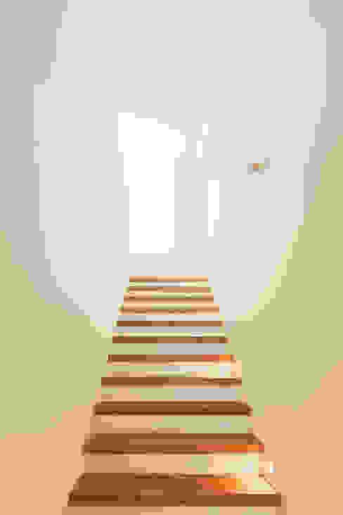 現代風玄關、走廊與階梯 根據 Ferreira | Verfürth Architekten 現代風