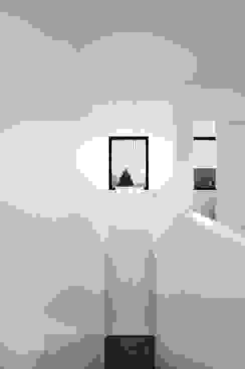 Classic corridor, hallway & stairs by STEINMETZDEMEYER architectes urbanistes Classic