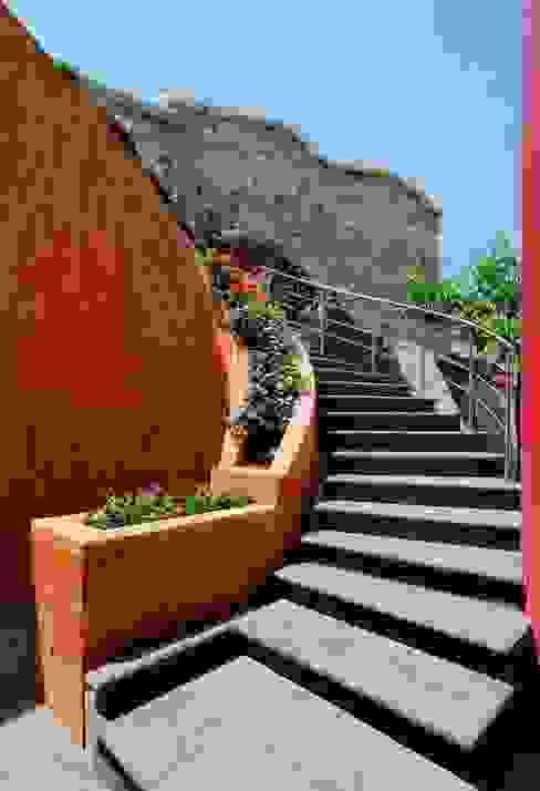Modern corridor, hallway & stairs by Excelencia en Diseño Modern