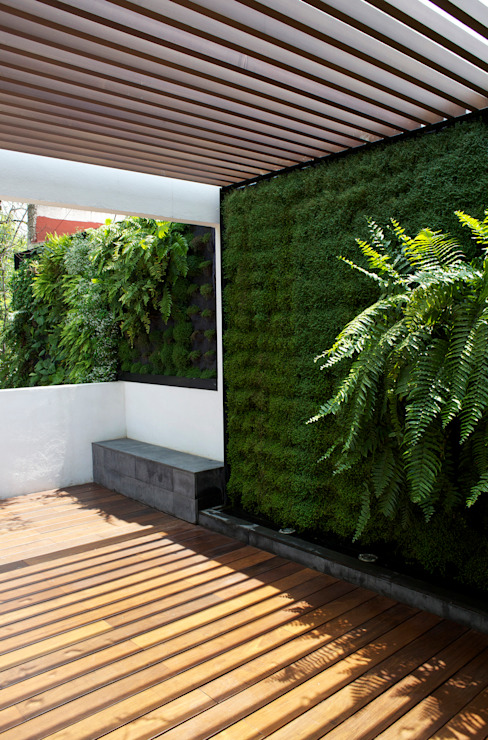 Patios by DF ARQUITECTOS,