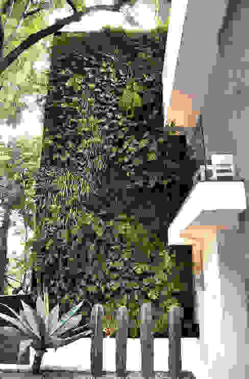 Balkon, Beranda & Teras Modern Oleh DF ARQUITECTOS Modern