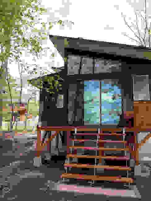 南面の外観 モダンな 家 の 大庭建築設計事務所 モダン