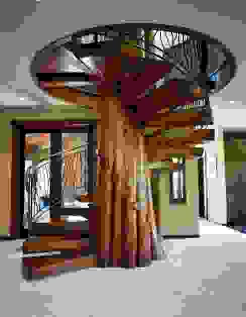 Ahşap Merdiven Uygulaması Modern Koridor, Hol & Merdivenler homify Modern Ahşap Ahşap rengi
