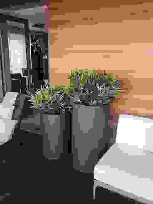 Modern Terrace by Hazer Bilişim Yapı Dekorasyon Rıza Hazer Modern