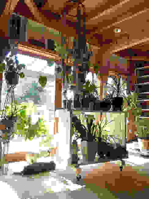 合同会社加藤哲也建築設計事務所 溫室