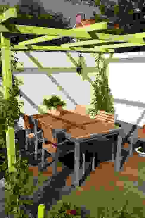 Mini patio tuin Wijk bij Duurstede Moderne tuinen van Dutch Quality Gardens, Mocking Hoveniers Modern