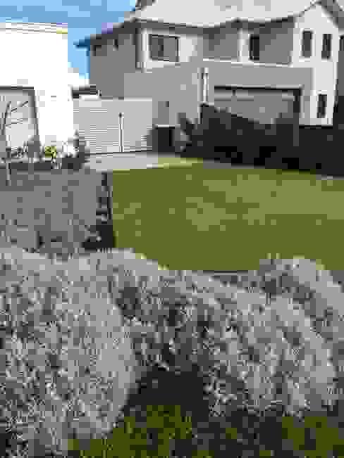 庭院 by Project Artichoke