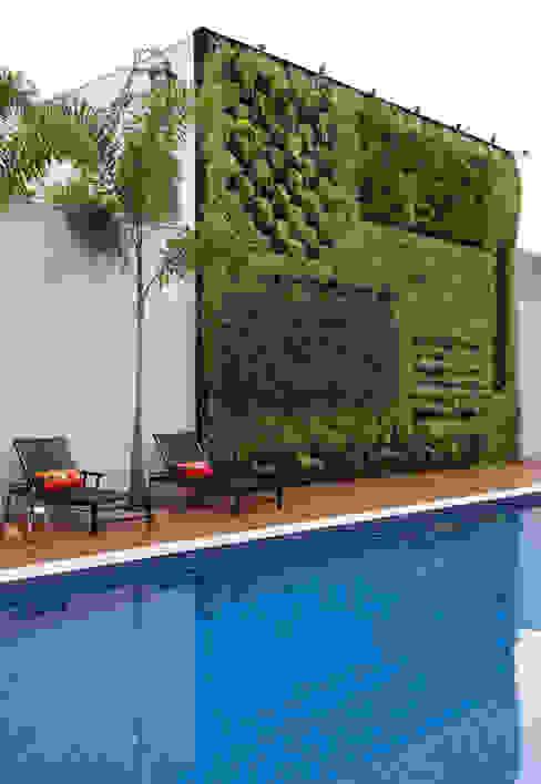 Jardines modernos: Ideas, imágenes y decoración de Studio Claudia Pimenta e Patricia Franco Decoração de Interiores Moderno
