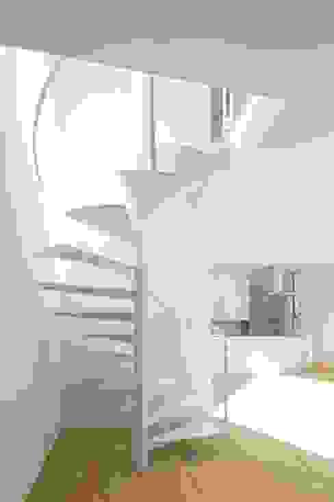 sha-la らせん階段 モダンスタイルの 玄関&廊下&階段 の e do design 一級建築士事務所 モダン