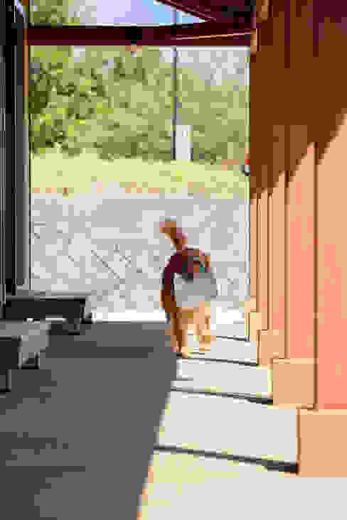 列柱とワン! 虎設計工房 オリジナルスタイルの 玄関&廊下&階段 無垢材 ベージュ
